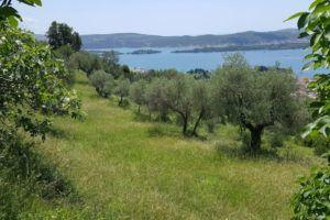 Land_plots_Peani_Tivat_08